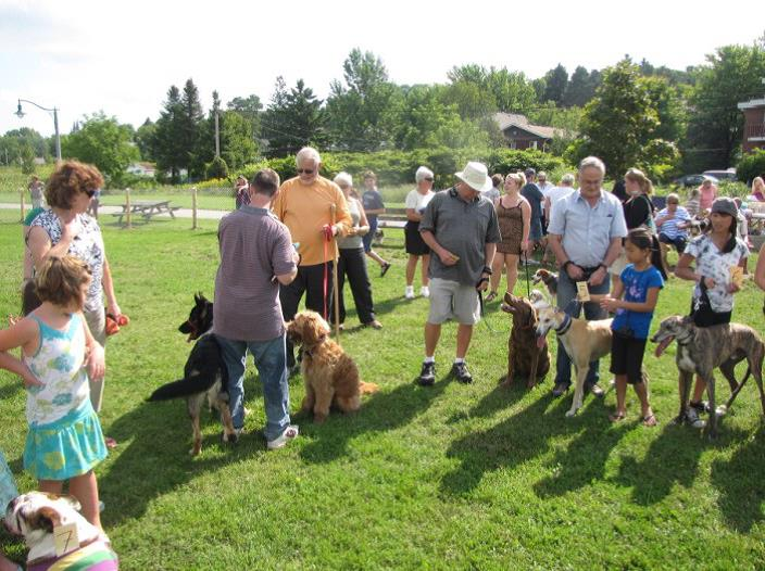 Dog Park in Penetanguishene